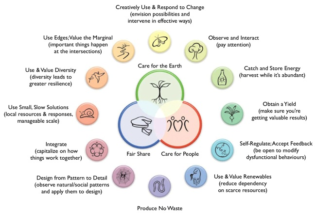 understand the theory and principles that underpin person centred practice essay The person-centred approach guides all current uk health and social care practice (edwards, 2012) this model of care, based on the early therapeutic work of carl rogers, emphasises protecting the individual rights of clients, and making decisions in a manner that best meets their unique needs (moon, 2008.